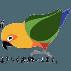 インコいろいろ(敬語スタンプ)