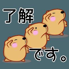 きゃぴばら【敬語】