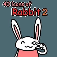 ウサギ第二版のための40の面白い表現