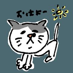 Hanabuchi cat Kojya