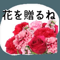 母の日に花を♪ Part 4
