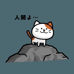 ねこの生活図鑑2
