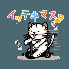 [LINEスタンプ] ちゃしろぶさへたねこ茶輔(さすけ) (1)