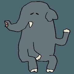 感謝と謝罪を忘れない象さんとカバくん