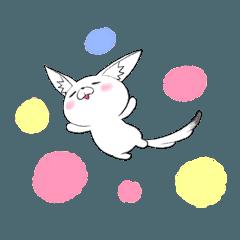 Kawaii~~Fennec Fox