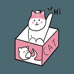 pink cat 'DoDo'