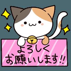 三毛猫 みけにゃん よく使う ねこ 猫