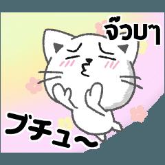 タイ語と日本語で好きな女性にアピール