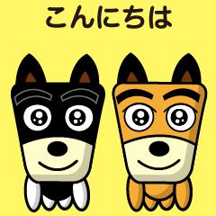 柴犬さっちゃん4