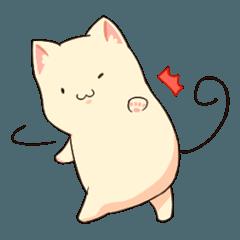 Mochi x Cat