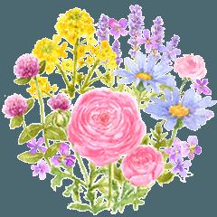 大人かわいい水彩の花とやさしい言葉