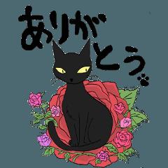 黒猫で会話