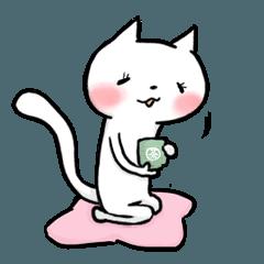 白玉ネコ4