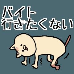 いぬみたいなねこ(バイト編)