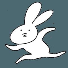 鋭敏なウサギ