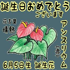 6月、誕生日ごとの誕生花と花言葉。