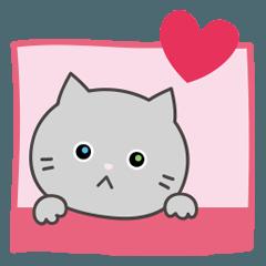 灰色猫のテンション低めスタンプ♥︎繁体字