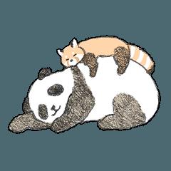 パンダ&レッサーパンダ