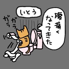 いとうさん用★ネット用語とか使うネコ