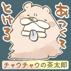 チャウチャウの茶太郎 〜今日ももふもふ〜