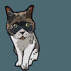 深川猫近堂 ほっこり猫ライフ Vol.2