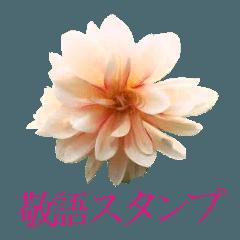 花畑スタンプ4