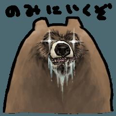 クマ飲み(4杯目)