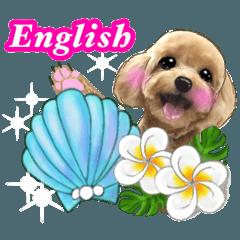 [LINEスタンプ] ハワイのお花とレッドトイプー 英語版