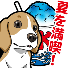 [LINEスタンプ] わんこ日和 ビーグル こいぬ vol.5 夏