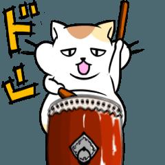 がんばるデブ猫