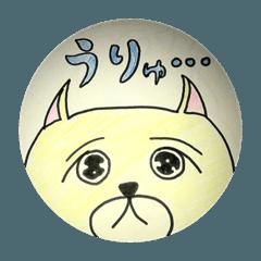 柴犬のワフ 2