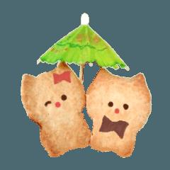 クッキーねこちゃんの日常
