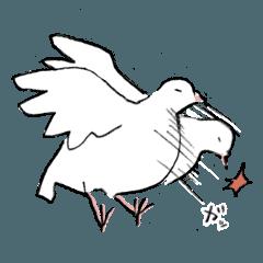 無言のハト