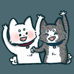 秋田犬 ジャン 2