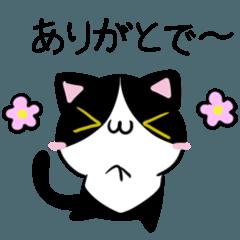 讃岐弁のねことひよこ3