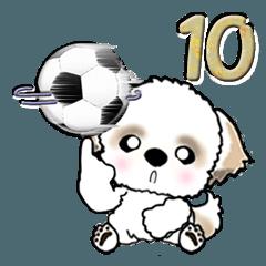 【大きめ文字】シーズー(サッカー) Vol.10
