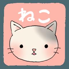 猫!ネコ!ねこ!