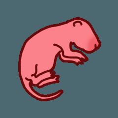 かわいいピンクマウス