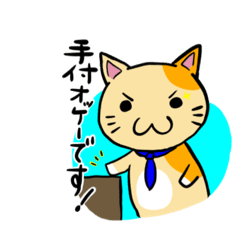 不動産屋のブチ猫2