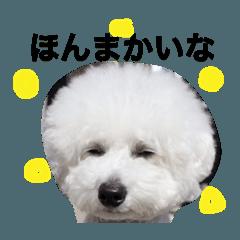 モフズ〜大福小福の挨拶〜