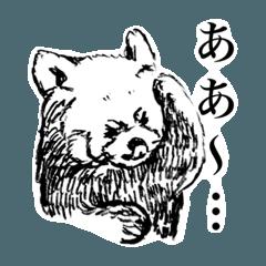 えんぴつで描いたリアルレッサーパンダ