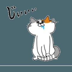 柴犬と日本猫