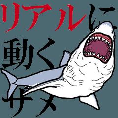 リアルに動くホホジロザメ