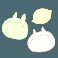 まったり猫と兎とレモン