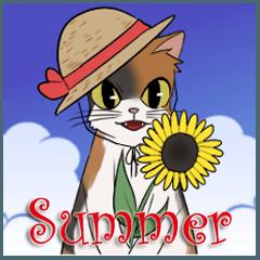 三毛猫ミランの夏バージョン