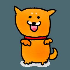 柴犬ラク1 (New Version)