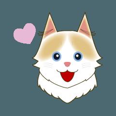 猫のルナの日常スタンプ