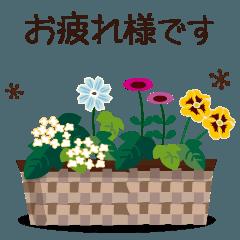 [LINEスタンプ] 動く!大人かわいいお花2-敬語丁寧語-夏Ver
