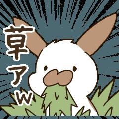たれみみたるちん~JK語.流行語.若者言葉~