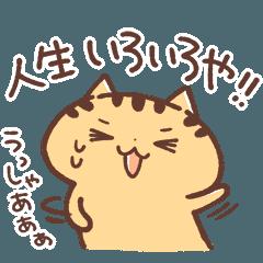 関西弁にゃんこ Vol.6